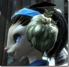 gw2-wintersday-earmuffs-4