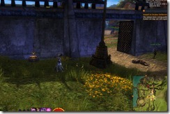 gw2-chicken-scramble-achievement-guide-gendarran-fields-4