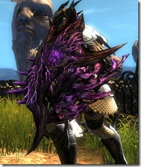 gw2-nightmare-shield-2