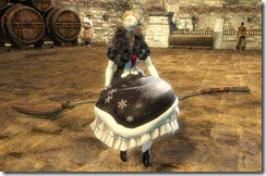 gw2-riding-broom-2