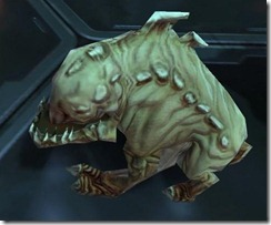 swtor-pet-ivory-mouse-horranth