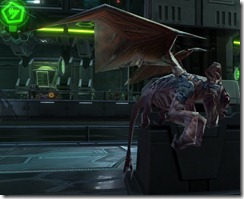swtor-pets-mountain-lizardbat