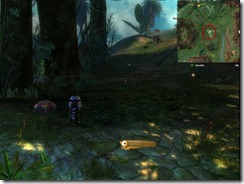gw2-a-waddle-to-remember-achievement-guide-9