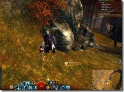 gw2-lost-and-found-guide-refugee's-wooden-soldier-17