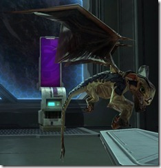 swtor-pets-golden-lizardbat