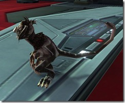 swtor-sablefur-kowakian-monkey-lizard-space-pirate-2