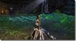 gw2-bandit's-cabbage-patch-guild-trek-2