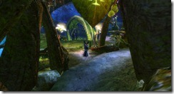 gw2-black-lion-root-cellar-guild-trek-4