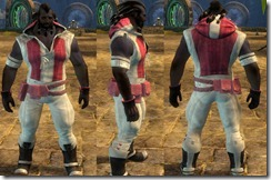 gw2-casual-hoodie-riding-pants-norn