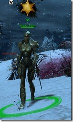 gw2-deputy-brooke-guild-bounty-2