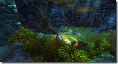 gw2-doefalls-court-guild-trek-4