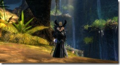 gw2-east-end-falls-guild-trek-3
