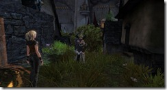 gw2-east-lurk-alley-guild-trek-3