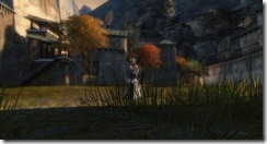 gw2-founder's-flagon-hearth-guild-trek-4