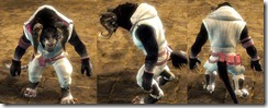 gw2-leather-hoodie-riding-pants-charr