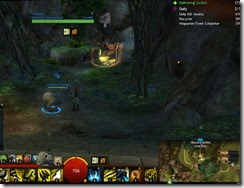 gw2-soren-draa--rest-shop-guild-trek-4