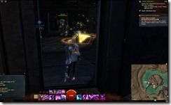 gw2-skalecatch-bucher-shop-guild-trek-2