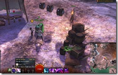 gw2-southsun-volunteer-fieldwork-achievement