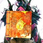 gw2-ascended-book-back-item.jpg