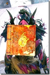 gw2-ascended-book-back-item