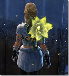 gw2-fervid-censer-back-item-2