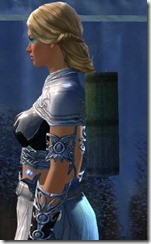 gw2-mad-memoires-back-item-2