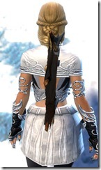 gw2-savage-guild-back-banner-2