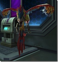 swtor-glided-flutterplume-pet