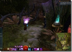 gw2-a-waddle-to-remember-caledon-forest-3b