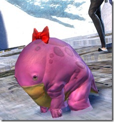 gw2-mini-poowulpi-the-persnicketous-bazarr-quaggan-2