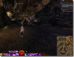 gw2-speedy-reader-achievement-the-founding-12