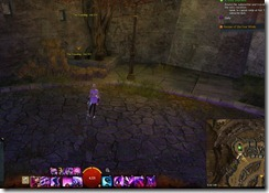 gw2-speedy-reader-achievement-the-founding-15