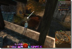 gw2-speedy-reader-achievement-the-founding-20