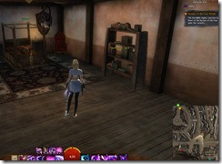 gw2-speedy-reader-achievement-the-founding-2