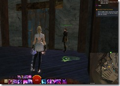 gw2-speedy-reader-achievement-the-founding-7