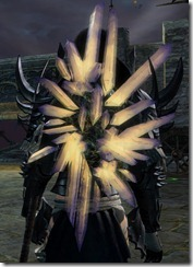 gw2-zenith-ward-shield-4