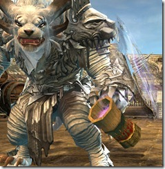gw2-poyaqui's-noggin-focus-champion-weapon-skins