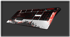 gw2-steelseries-gaming-keyboard-3