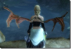 gw2-wing-of-the-sunless-2