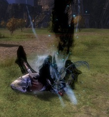 gw2-toxic-offshoot-pvp-finisher