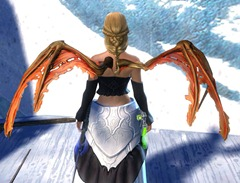 gw2-wings-of-the-sunless