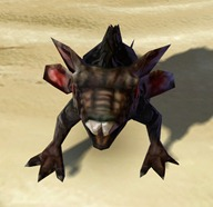 swtor-black-womp-weasel-pet-2