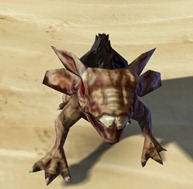 swtor-brown-womp-weasel-pet-2