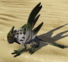 swtor-frosted-vdrake-pet-2