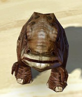 swtor-lurker-blurrg-pet