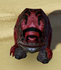swtor-nefarious-blurrg-pet