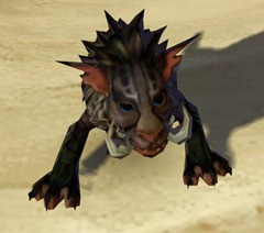 swtor-shadow-nekarr-cat-pet