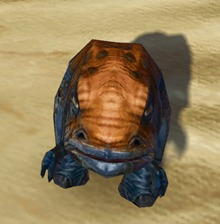 swtor-sublime-blurrg-pet-2