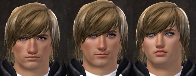 gw2-total-makeover-kit-new-faces-human-male