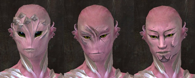 gw2-total-makeover-kit-new-faces-sylvari-male